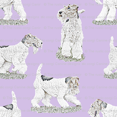 Playful Wire Fox Terrier - purple