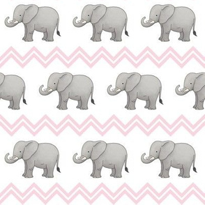 Baby elephant with pink chevron