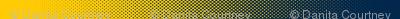 Dean's Yellow & Blue (Univ. of Michigan) Halftone Border Print