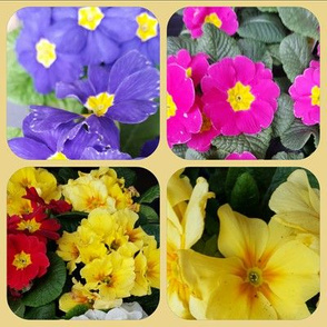 las floras 1