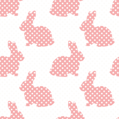 Pink Dotted Bunnies
