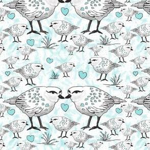 Shore Birds with Aqua hearts by Salzanos