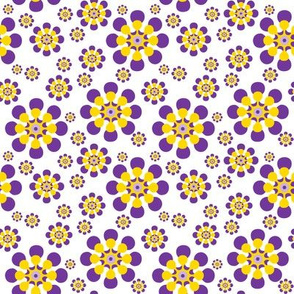 Purple and Yellow Daisies