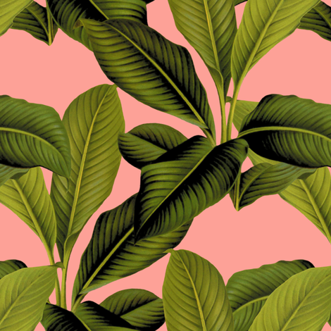 Palm In Palm ~ Duchess ~ Small  fabric by peacoquettedesigns on Spoonflower - custom fabric