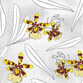 Rrpenicl_orchids_copyright_pinkywittingslow_2016_ver1-01_shop_thumb