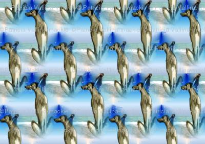 houndharefabric6x4