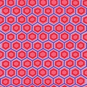 hex lines in punch + iris