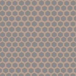 hex in cloud + sepia