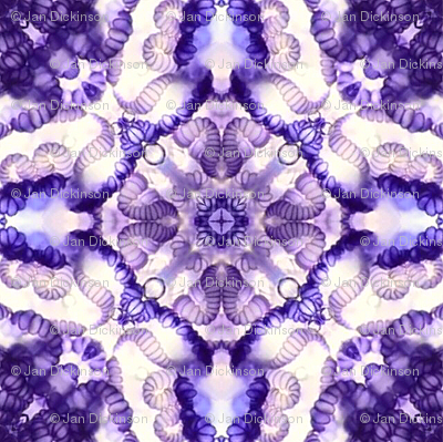 violet jelly I