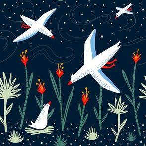 night's birds