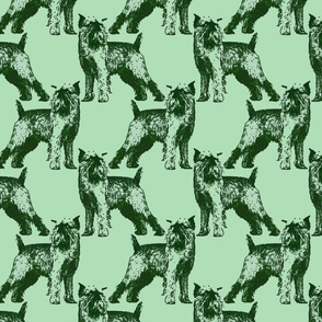 Posing Brussels Griffon - green