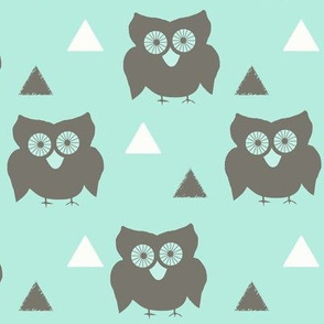 Owls_and_Triangles_Aqua