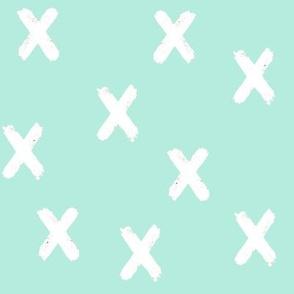 X_s_White_on_Aqua
