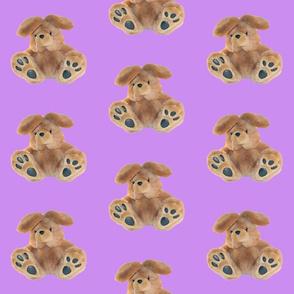 Bunny on Purple