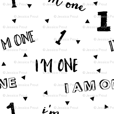 I'm one // first birthday