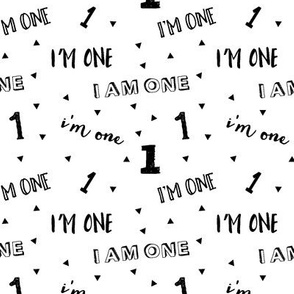 I'm one // first birthday