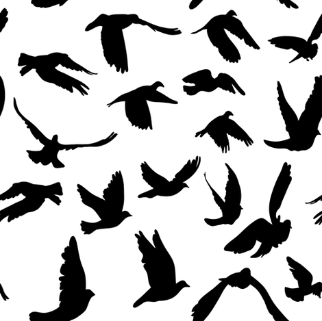 Doves and pigeons, black and white fabric by ekaterinap on Spoonflower - custom fabric