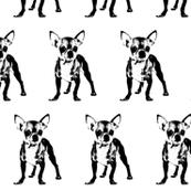 "Chihuahua - Large (3"")"