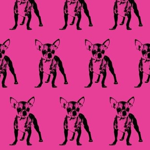 "2.5"" Chihuahuas / Hot Pink"