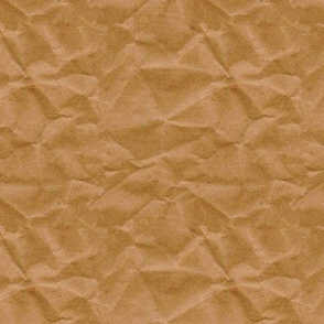 Paper Bag Texture - Large
