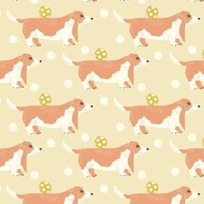 Dogs basset