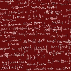 Math Notes on Maroon // Small