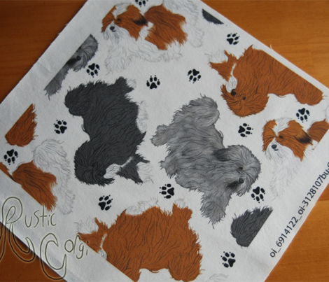 Trotting Havanese and paw prints B - white