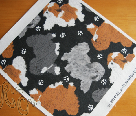 Trotting Havanese and paw prints B - black