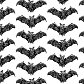 Bats in Flight in Black and White