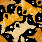 Trotting Golden Retrievers and paw prints - tiny black