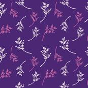 Purple Foliage