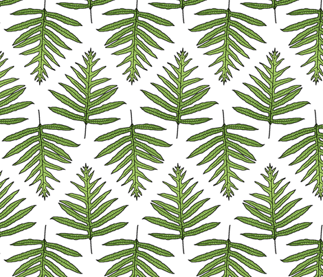 Fern Array Large 150 fabric by kadyson on Spoonflower - custom fabric