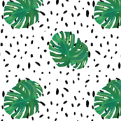 Monstera Spot Dollshouse Wallpaper