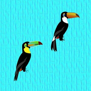 Toucan Soldiers