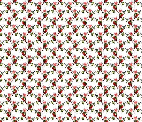 Rrcardinal_and_hummingbird_revision_pattern_white_shop_preview