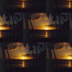 Maui6