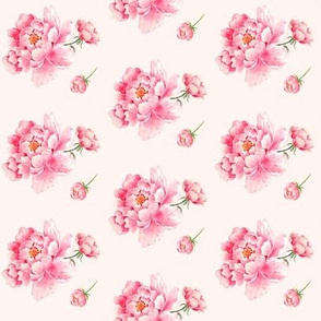 Pink Flowers - Pink Background Floral