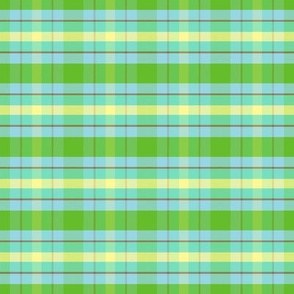 apple-green-plaid
