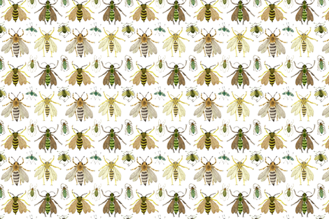 Insecta fabric by gollybard on Spoonflower - custom fabric