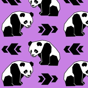 Panda with Purple Background