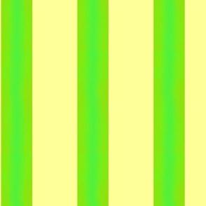Zaza: Color Shaded Stripe - Medium
