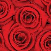 Rrrrred_red_roses_shop_thumb