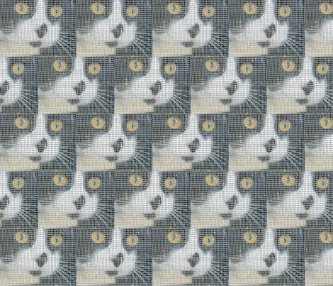 George in the Window fabric by lfntextiles on Spoonflower - custom fabric