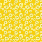 Rrdaisies_on_yellow_shop_thumb