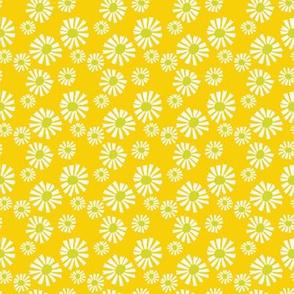 Daisy Days Yellow