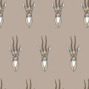 Fawn Gazelle Mount
