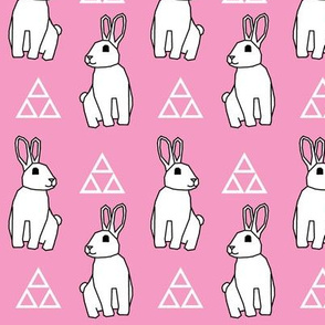 White Bunny with Pink Background
