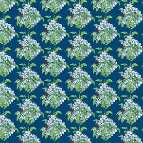 Crabapples in Spring