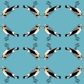 Birdlandia