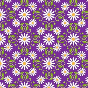 Daisy Square- purple- extra large